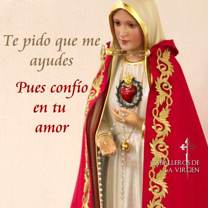 Oh Madre guarda en tu amoroso Corazón a este corazón que te suplica. Que así esté lleno de ternura hacia tu hijo y de amor hacia ti. Trinidad Santa fuente de vida eterna santidad del Corazón de María reina pronto en nuestros corazones.