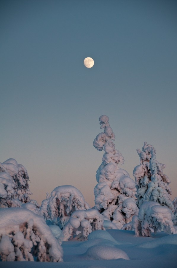 Moon Rise at Sunset – Kaunispää, Saariselkä, Lapland, Finland – February 14th, 2011