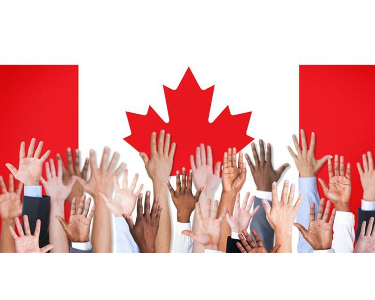 """IRCC has updated the """"Employer's Roadmap to hiring and retaining internationally trained workers"""". This is a guide for Canadian employers that outlines the processes & benefits of hiring internationally trained workers.  https://www.canada.ca/en/immigration-refugees-citizenship/corporate/publications-manuals/employer-roadmap-hiring-retaining-internationally-trained-workers.html #newcomers #careers #IRCC #ONjobs"""
