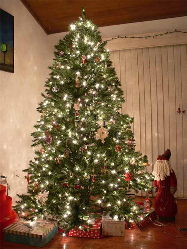 20 Beautiful Christmas Trees Photography