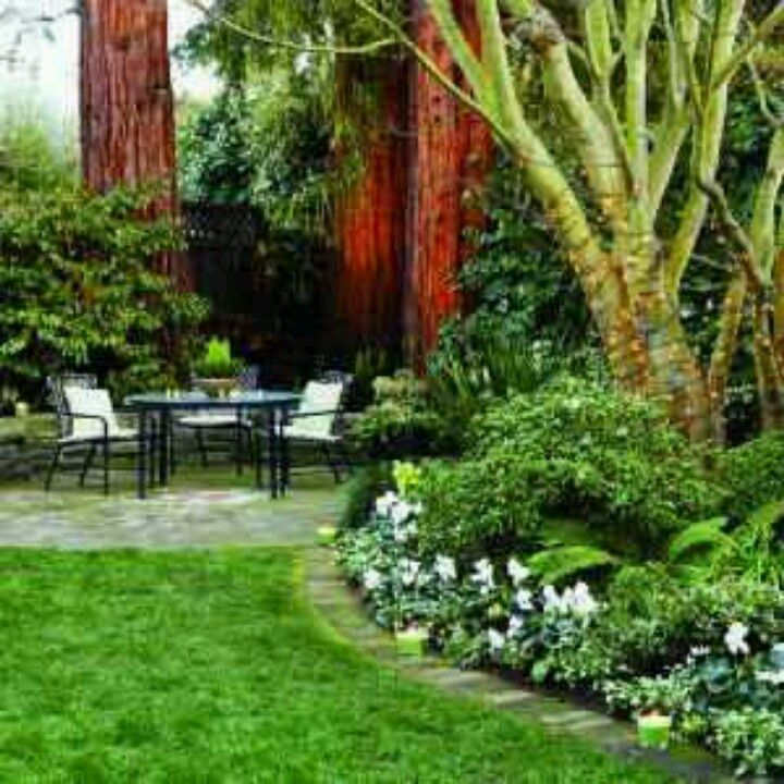Beautiful Back Yards | Beautiful Backyard Garden!