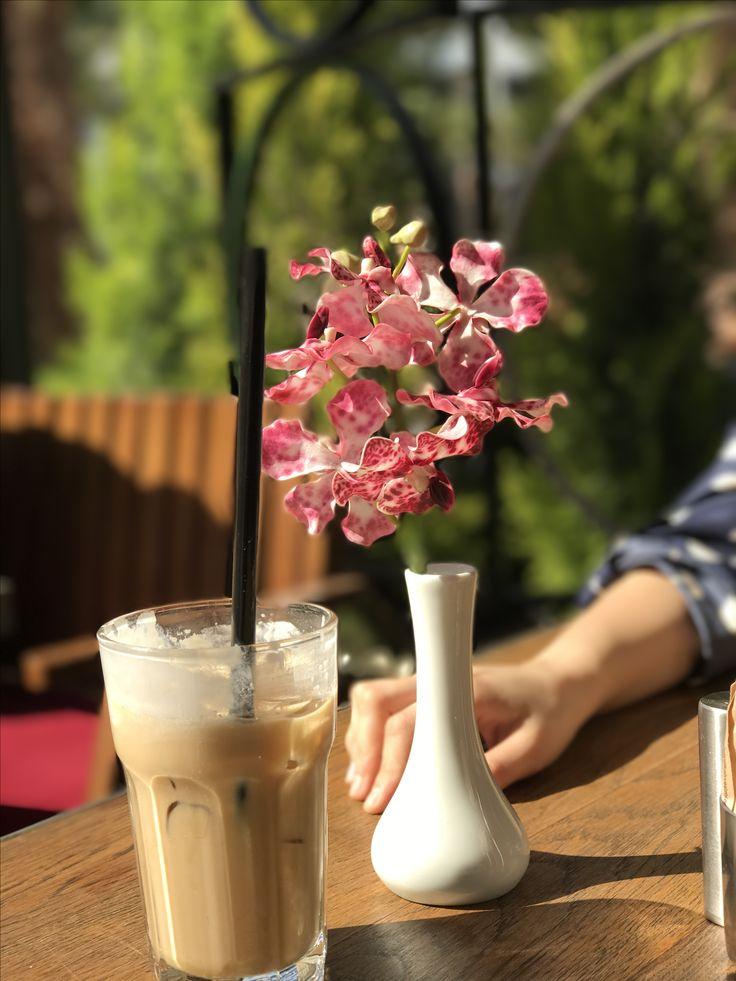 Buzlu kahve, pembe çiçekler, çam ağaçları, güneş ışığı, huzurun renkleri, dünyanın renkleri, hayata sımsıkı tutunan bir el, mart, tatil, mutluluk, keyif