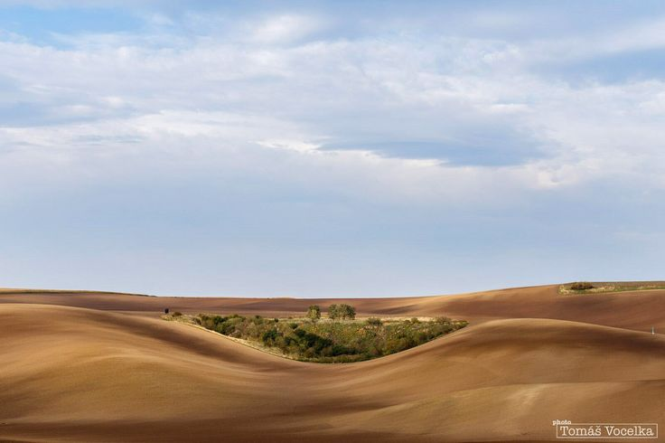 Vlny v krajině působí až neskutečným dojmem, a to zvláště na podzim, kdy jsou pole zoraná.