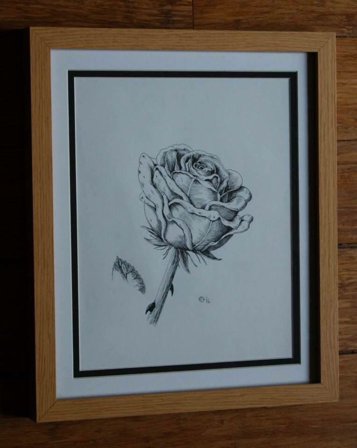 A Gift Of A Rose (for my mother)
