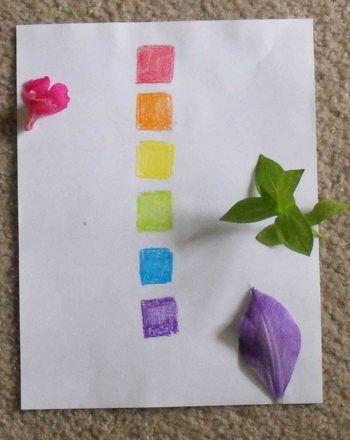 Activities: Color Scavenger Hunt