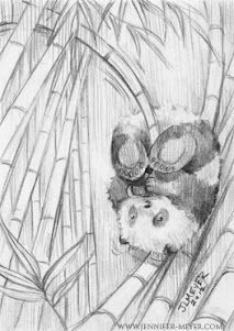 how to draw a realistic panda bear eating bamboo - Google Search