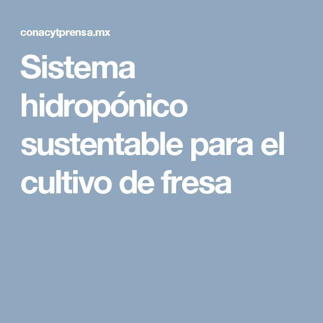 Sistema hidropónico sustentable para el cultivo de fresa
