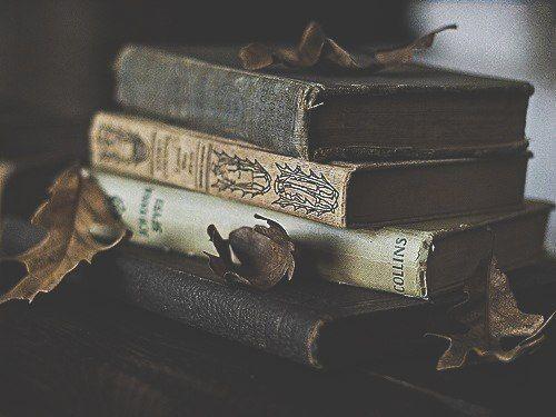 SET YOUR GOALS - OLD BOOK MISREAD LYRICS