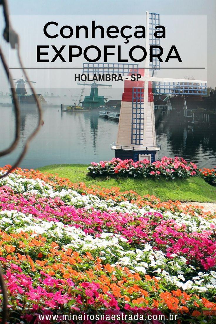 Saiba como é a Expoflora, o maior evento do ramo das flores do Brasil, que acontece na cidade de Holambra, interior de São Paulo, todo mês de setembro.
