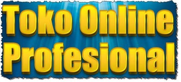 Membuat toko online profesional dengan domain dan hosting sendiri
