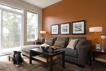 Contemporary Living room . Burnt orange wall color