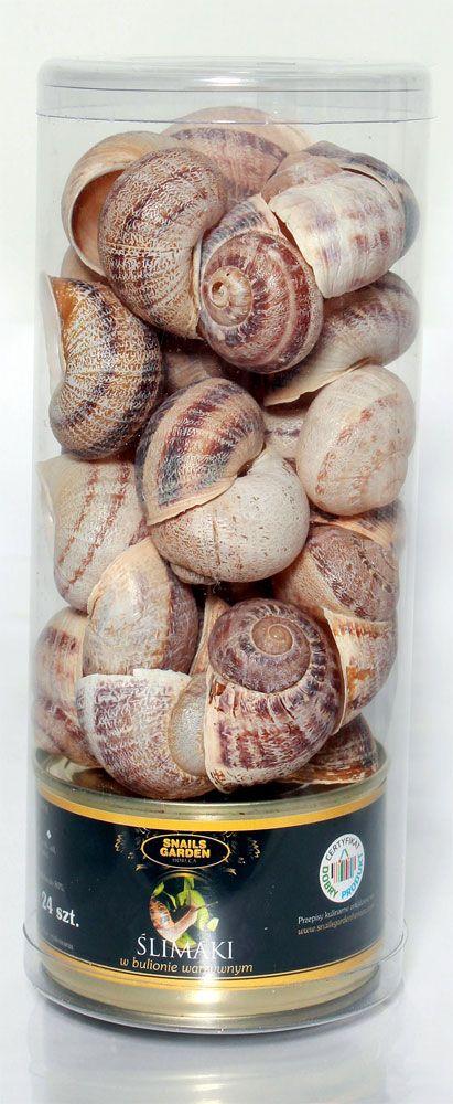 Snails Garden - Sheraton Sopot Hotel i Snails Garden Horeca. Polska - Niemcy - sukces polskiego hodowcy ślimaków!
