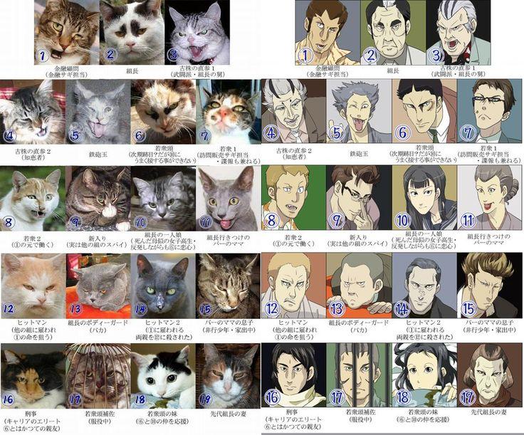 cats like japanese yakuza