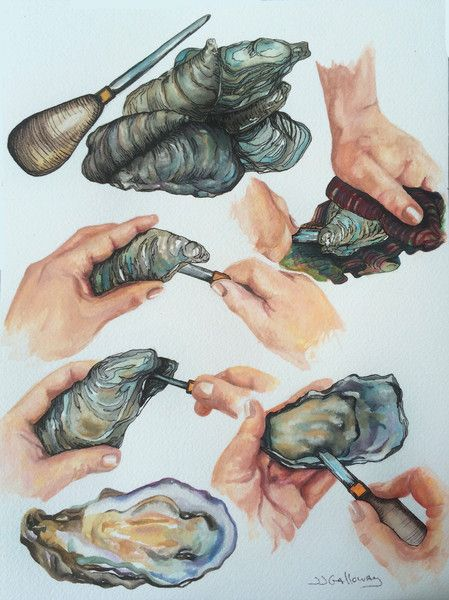 I'm fascinated with food traditions. When it comes to shucking oysters, those traditions run deep! There seems to be many ways to shuck and oyster. It depends