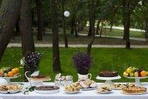 Scenarii cu arome de vară și amintiri cu petreceri în grădină