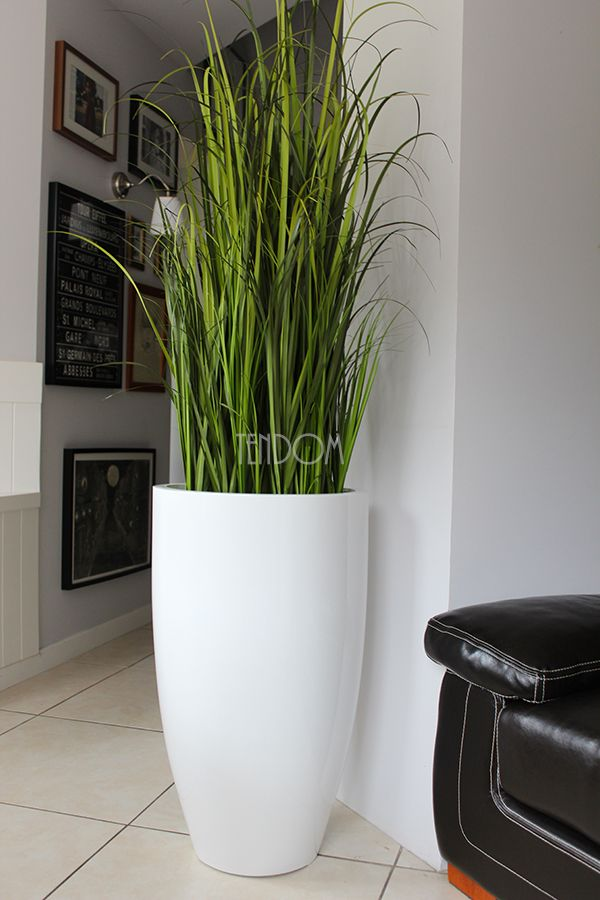 Modern Plant Room