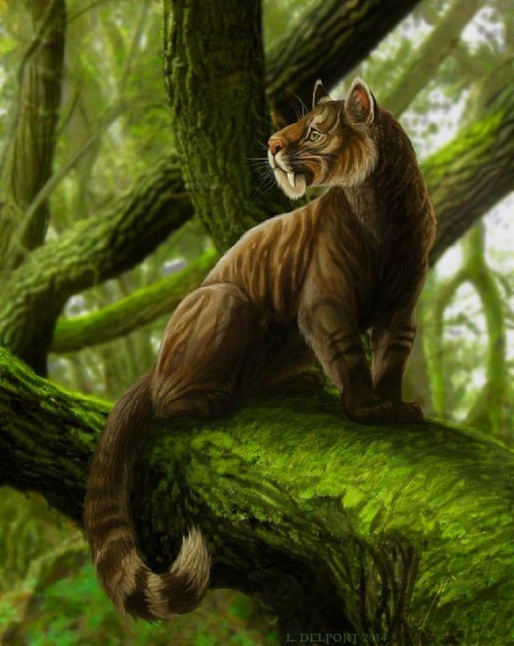 Amazon Manatees - Amazon River Brazil Animals
