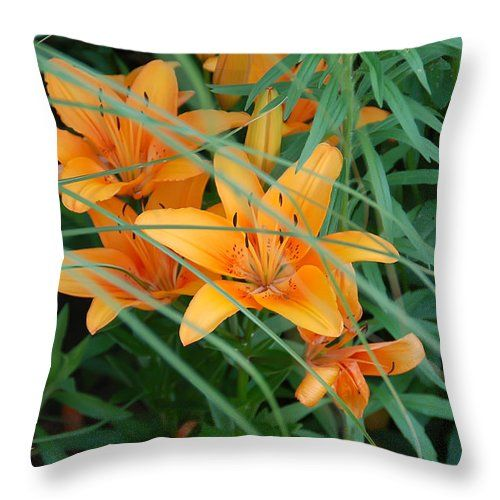 """Tiger Lilies Throw Pillow for Sale by Aimee L Maher Photography and Art Visit ALMGallerydotcom. Our throw pillows are made from 100% spun polyester poplin fabric and add a stylish statement to any room. Pillows are available in sizes from 14""""x14"""" up to 26""""x26"""". Each pillow is printed on both sides (same image) and includes a concealed zipper and removable insert (if selected) for easy cleaning. Ships within 2-3 business days"""