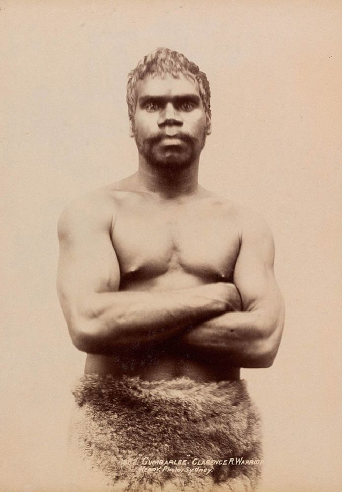 Gumberlee in Kangaroo loincloth , an Australian Aborigine warrior. . Photo by Kerry & Co. ca. 1890-1898 Clarence River G62 Aborigine Australian Postcard Vintage Aboriginal People Of Australia Photo