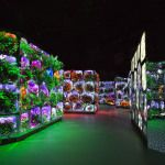 """Scheich Mohammed präsentiert """"Climate Change Reimagined"""": An Exhibition by the Museum of the Future in Dubai"""