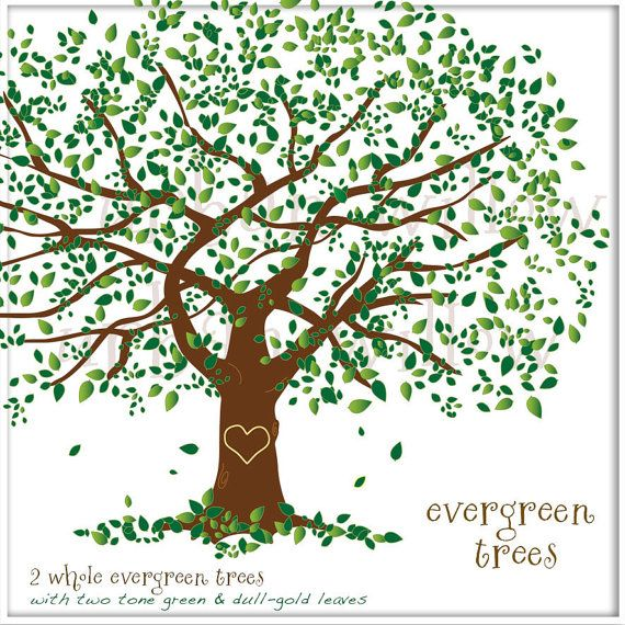 Family tree background photo book inspiration - Family tree desktop wallpaper ...
