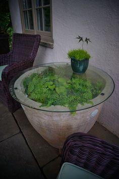 Terrarium pot with a glass top (garden art) | by KarlGercens.com GARDEN LECTURES