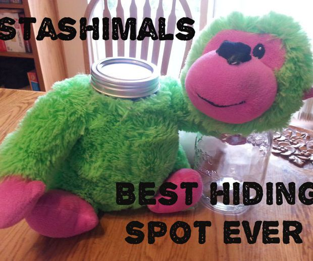 Stashimal: great hiding spot...do not recommend glass or hard surfaces that would rattle.
