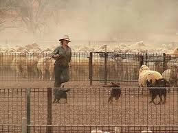 Image result for australian outback clothing country farming