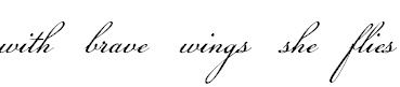 """""""with brave wings she flies,"""" I got a necklace with the same inscription for my friend who is battling cancer for the 3rd time. We talked and I am going to get this tattoo as a tribute to her and our friendship through the years."""