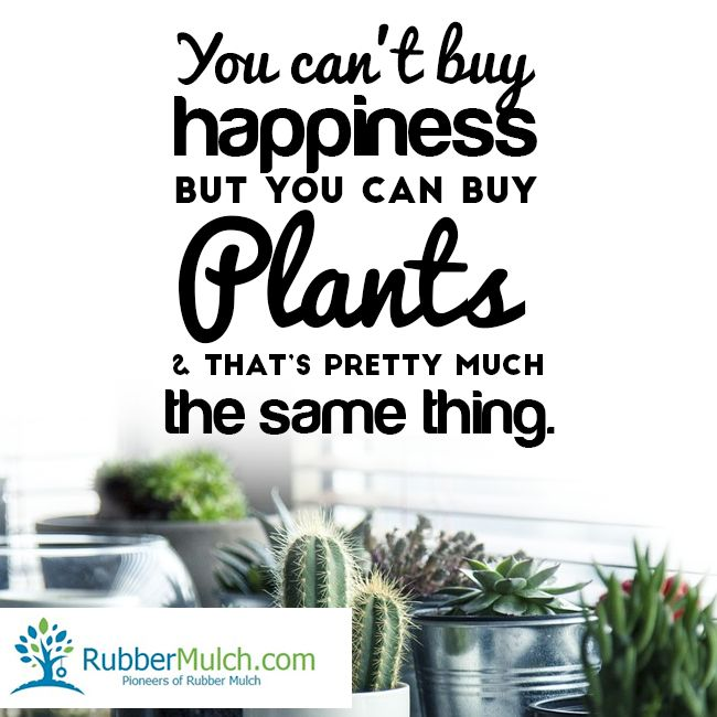 Buy Me Flowers Quote: 10 Best Go Green Quotes Images On Pinterest
