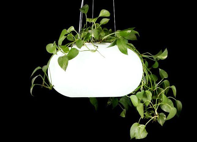 Купить товарПодвесные светильники садовые фонари с растения зеленые огни…