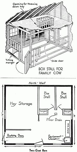 Why to raise dairy cows... layout could work for horses too