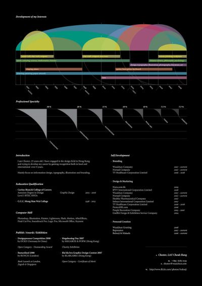 16 Infographic Resumes, A Visual Trend - Blog About Infographics and Data Visualization - Cool Infographics