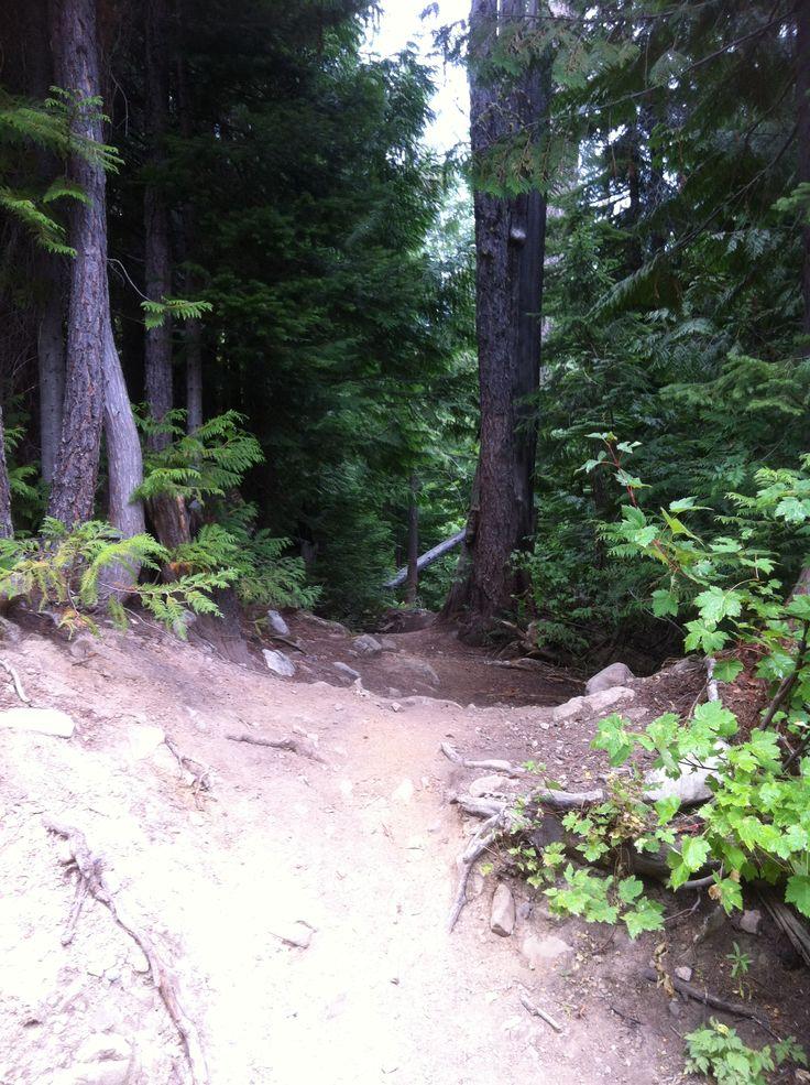 Entrance to Verboten, Gorbie trail system (Fernie)
