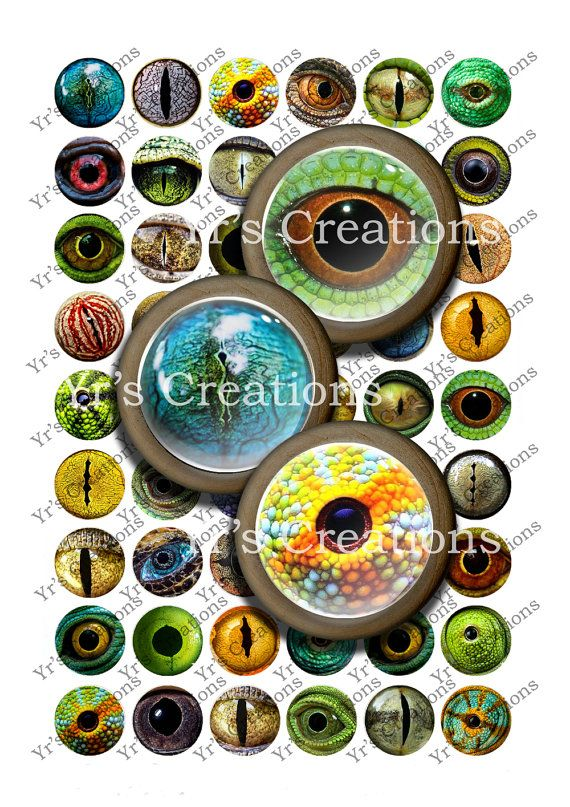 Reptile Eyes - 1 inch circles - Digital Collage Sheet - Animal Eyes for Pendants, Charms, Tags, Stickers, Craft and Mixed Media