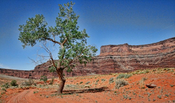 West of Moab - John Johnson