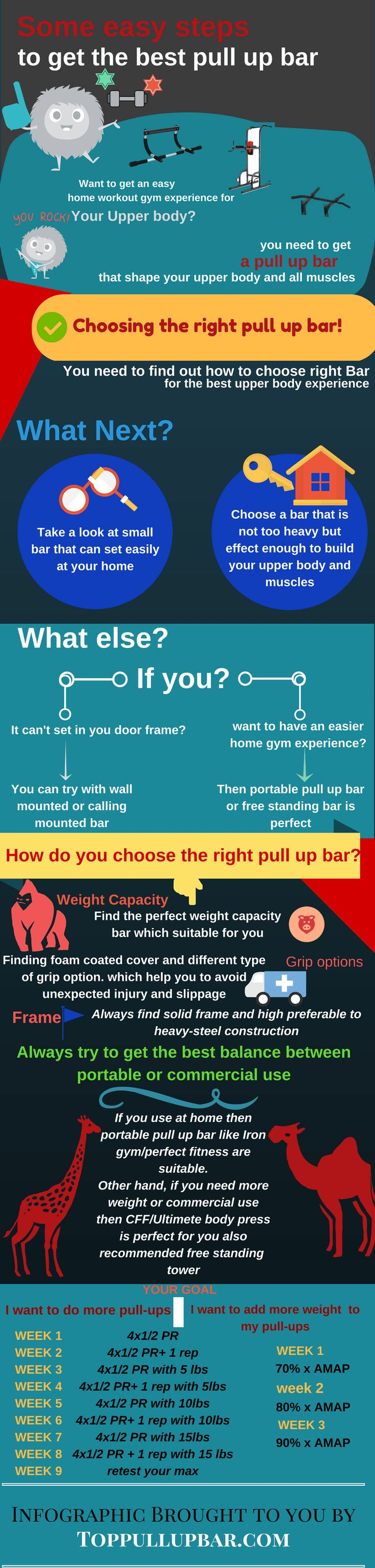 Infographic best pull up bar
