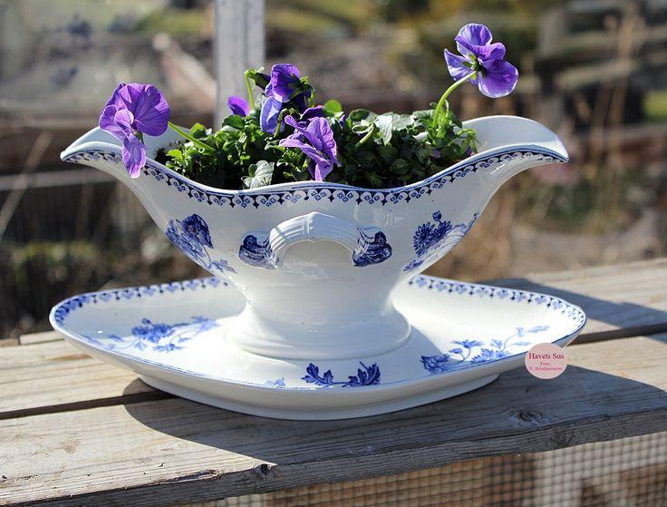 blomster - flowers - stedmoderblomster - sovseskål loppefund - fleamarkedfinds   mygarden - spring - forår - haveglæde - Havets Sus