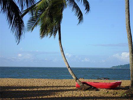Visiter la Guyane Française, le seul département d'outre mer situé en Amérique latine : découvrez les 5 lieux à ne pas manquer !