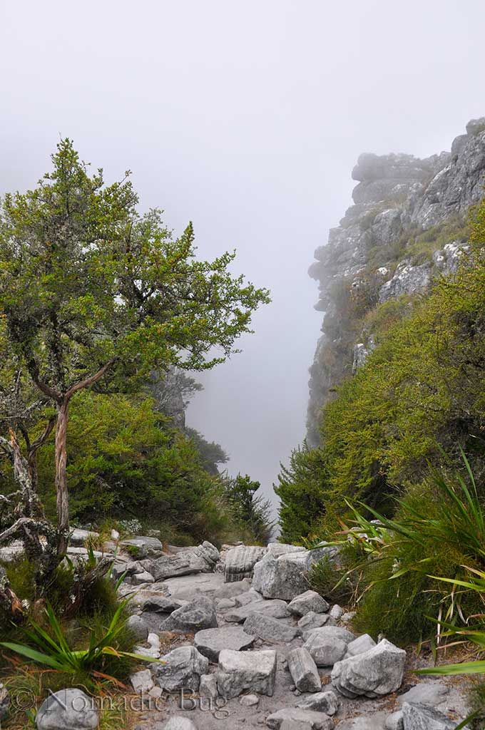 Platteklip Gorge hike, Table Mountain, Cape Town, South Africa Landmarks Nomadic Existence