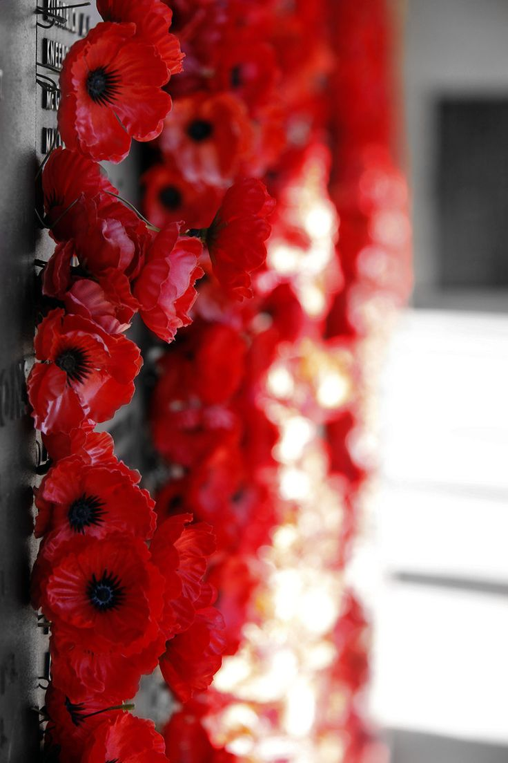 The Roll Of Honour - Australian War Memorial Canberra