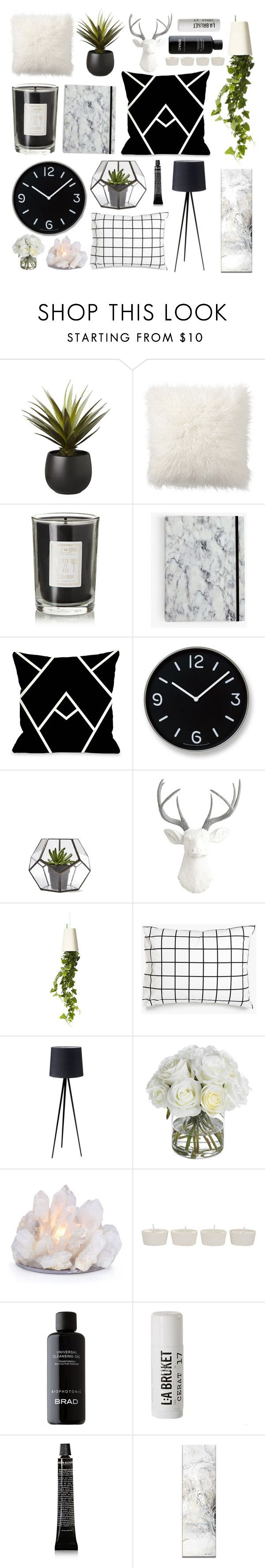"""""""Untitled #5"""" by blakrope on Polyvore featuring interior, interiors, interior design, home, home decor, interior decorating, CB2, Pottery Barn, Coqui Coqui and Lemnos"""