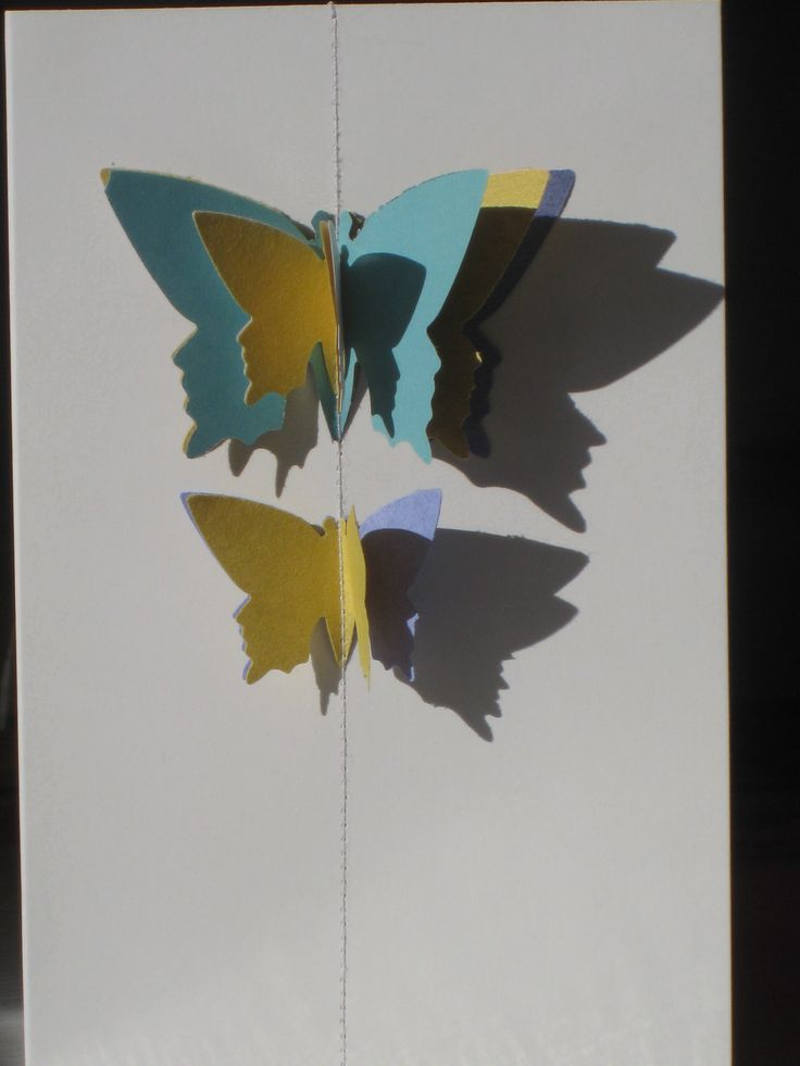 Layered butterfly cards that fly off the page! www.melroseandcompany.com
