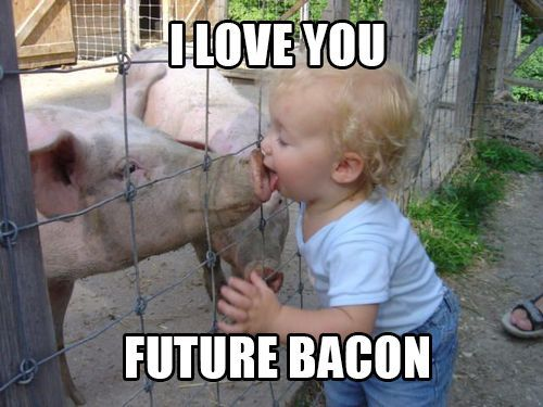 "Reminds me of my brother walking around my great Aunt's farm yelling ""here bacon bacon""...side note the kid probably got swine flu after this. Lol"