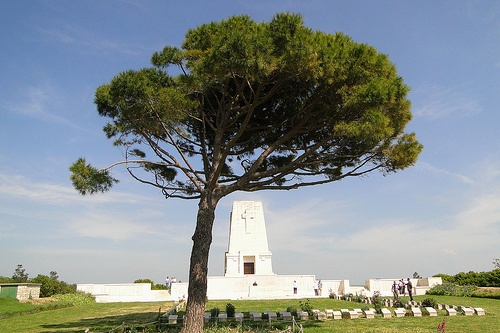 Lone Pine Cemetery on the Gelibolu Peninsula, site of the Gallipoli Battle, and of my great Uncle's grave
