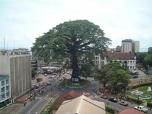 http://www.TravelPod.com - Cotton Tree by TravelPod member Chrlttzmmrmn, from Freetown, Sierra Leone