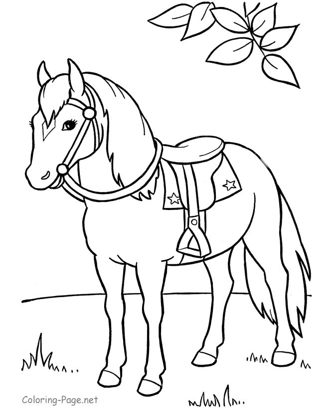 horse coloring pages saddle horse