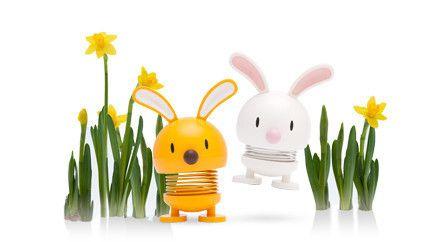 bunny_large_large.jpg (430×242)