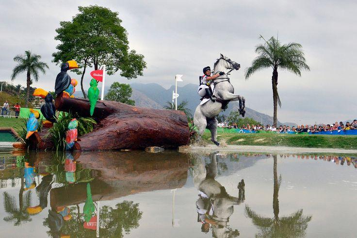 Как прошла первая неделя Олимпиады — Bird In Flight подводит итоги первой недели…