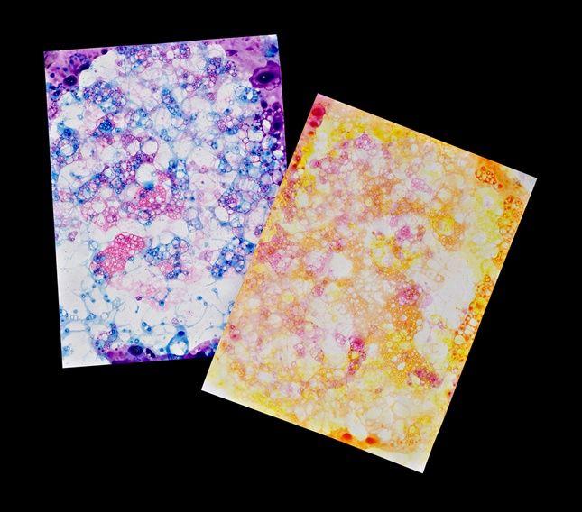 Bubble Prints craft